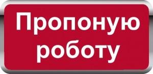 1465296803_proponuyu-robotu